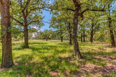 Argyle Residential Lots & Land For Sale: 6901 Chestnut Ridge Drive