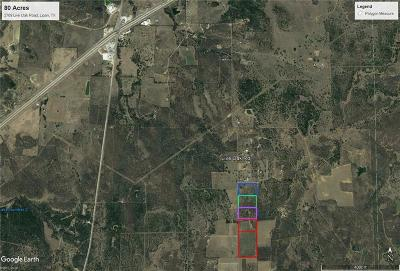 Santo Farm & Ranch For Sale: 2769 Live Oak Road