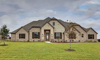 Collin County Single Family Home For Sale: 2176 Lariat Drive