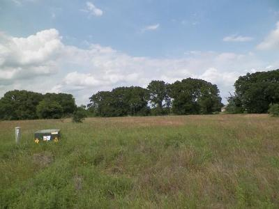 Wills Point Residential Lots & Land For Sale: 1500 Canyon Lake