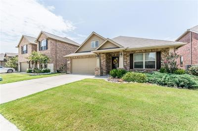 Prosper Single Family Home For Sale: 16400 Toledo Bend Court