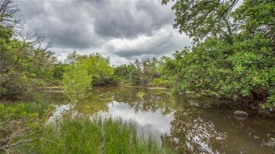 Palo Pinto Farm & Ranch For Sale: 1300 S Fm 4