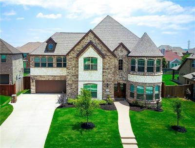 Grand Prairie Single Family Home For Sale: 7248 Portillo