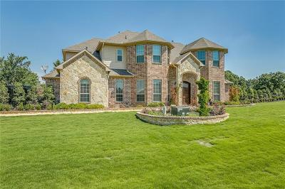 Burleson Single Family Home For Sale: 3839 Canyon Pass Trail