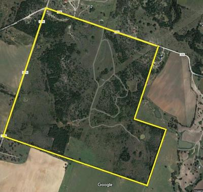 Dublin Farm & Ranch For Sale: 3551 Fm 1476