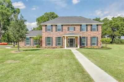 Millsap Single Family Home For Sale: 161 E Bluff Lane