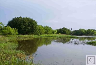 Stephens County Farm & Ranch For Sale: 0000 County Rd 187