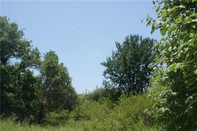 Millsap Residential Lots & Land For Sale: Tbd2 Lazy Bend Road