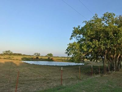Mineral Wells Farm & Ranch For Sale: 2836 Hayes Road