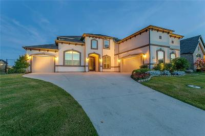 Flower Mound Single Family Home For Sale: 6628 Via Italia Drive