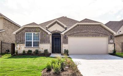 Single Family Home For Sale: 1737 Journey Forth Trail