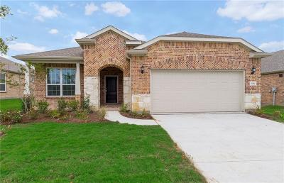 Frisco Single Family Home For Sale: 8261 Turtle Beach Road