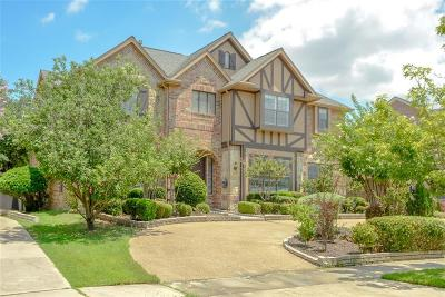 Lewisville Single Family Home For Sale: 2507 Merlin Drive