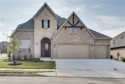 Fort Worth Single Family Home For Sale: 4628 Wilderness Pass