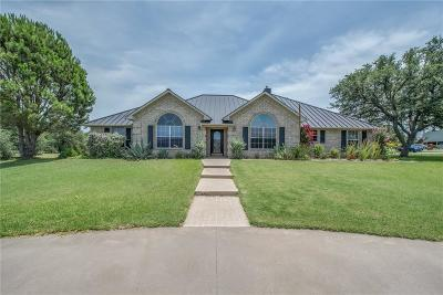 Mineral Wells Single Family Home For Sale: 675 Brazos West Drive