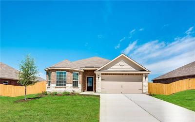 Tarrant County Single Family Home For Sale: 4145 Great Belt Drive