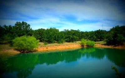Millsap Residential Lots & Land For Sale: 5801 Lazy Bend Road