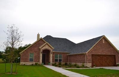 Hico Single Family Home For Sale: 825 County Road 243
