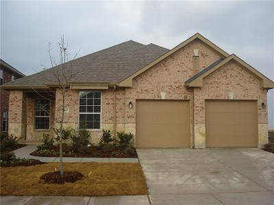 Prosper Single Family Home For Sale: 16401 Dry Creek Boulevard