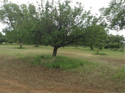 Mineral Wells Farm & Ranch For Sale: Caelche Rd