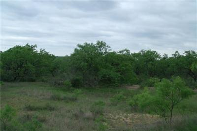Mills County Farm & Ranch For Sale: Tbd Fm 574