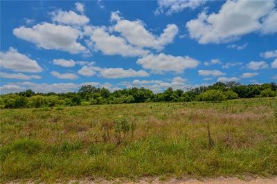 Stephenville Residential Lots & Land For Sale: 675 Timber Ridge Drive