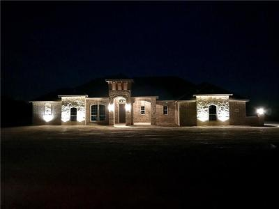 Springtown Single Family Home For Sale: 3541 Je Woody Road