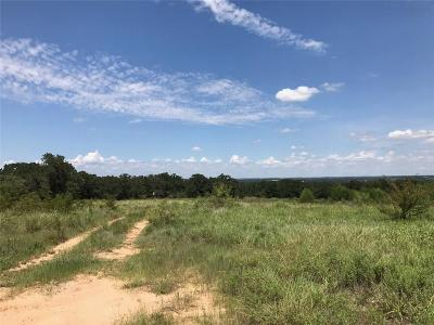Parker County, Hood County, Palo Pinto County, Wise County Farm & Ranch For Sale: 4737 West Hwy 114