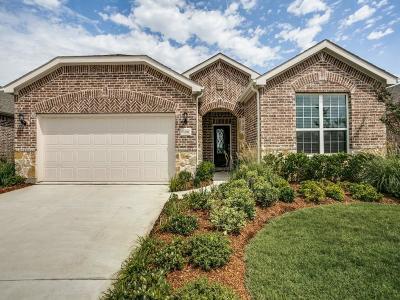 Frisco Single Family Home For Sale: 7206 Honeybee Lane
