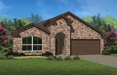 Fort Worth TX Single Family Home For Sale: $255,625