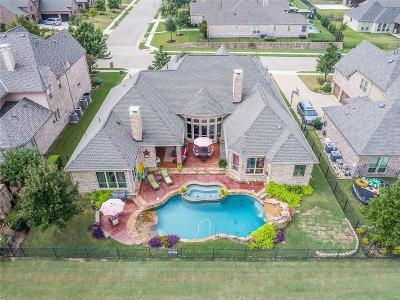 Prosper Single Family Home For Sale: 1600 Rock Ridge Drive