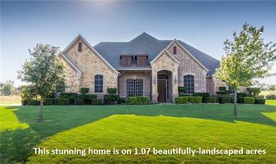 Fort Worth Single Family Home For Sale: 4732 Ricky Ranch Road