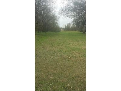 Coolidge, Mexia, Mount Calm Residential Lots & Land For Sale: 532 W Hopkins Street
