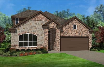 Aledo Single Family Home For Sale: 113 Gill Point Lane