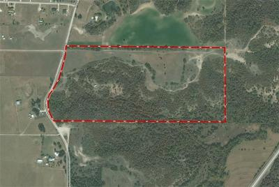 Weatherford Farm & Ranch For Sale: 4100 Weiland Road