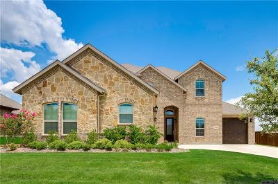 Grand Prairie Single Family Home For Sale: 2214 Fallbrooke Drive