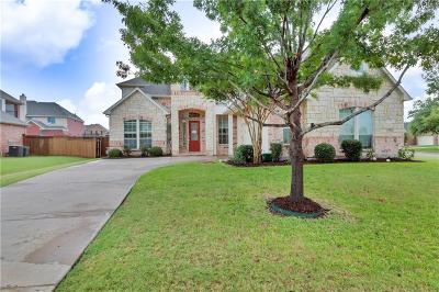 Grand Prairie Single Family Home For Sale: 2904 N Camino Lagos