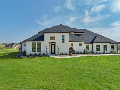 Fort Worth Single Family Home For Sale: 12160 Bella Parco Drive