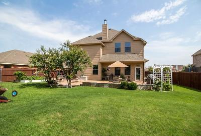 Denton Single Family Home For Sale: 3804 Springfield Street