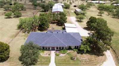 Abilene Single Family Home For Sale: 166 Purple Sage Road