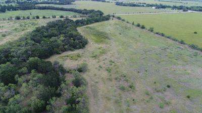 Stephens County Farm & Ranch For Sale: 10123 Fm 717 S
