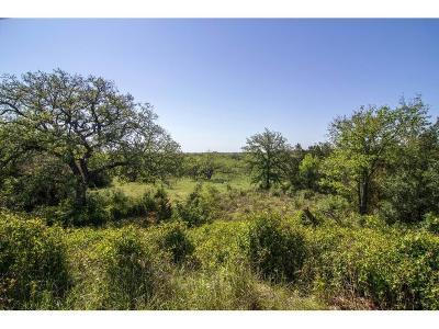 Mineral Wells Farm & Ranch For Sale: 1721 Lamkin Road #3