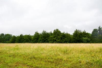 Dallas Residential Lots & Land For Sale: 1501 E Camp Wisdom Road