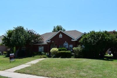 Plano Single Family Home For Sale: 3904 Segundo Lane