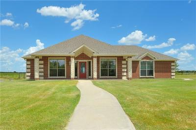 Millsap Single Family Home For Sale: 1415 Lazy Bend Road