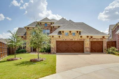 Irving Single Family Home For Sale: 1128 Anchor Terrace