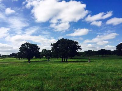 Millsap Farm & Ranch For Sale: 1620 Cool Junction Road