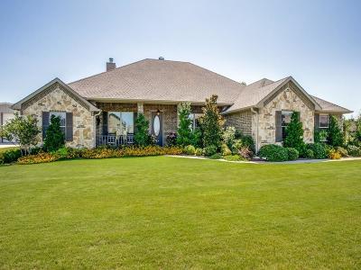 Nevada Single Family Home For Sale: 512 Hubbard Circle