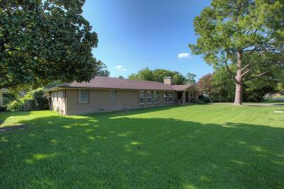 Mesquite Single Family Home For Sale: 1033 Lakeview Drive