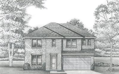 McKinney Single Family Home For Sale: 3208 Orleans Drive